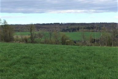 Farm land for sale with view