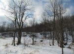 Trout Lake State Forest
