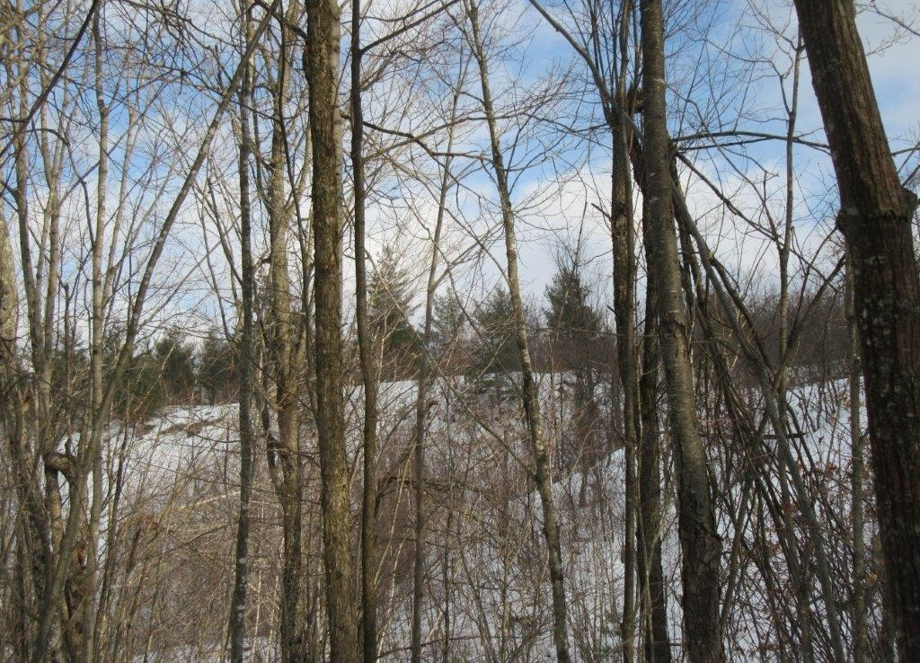 giving you access to Trout Lake's Eastern Shore and North Shore of Cedar Lake.