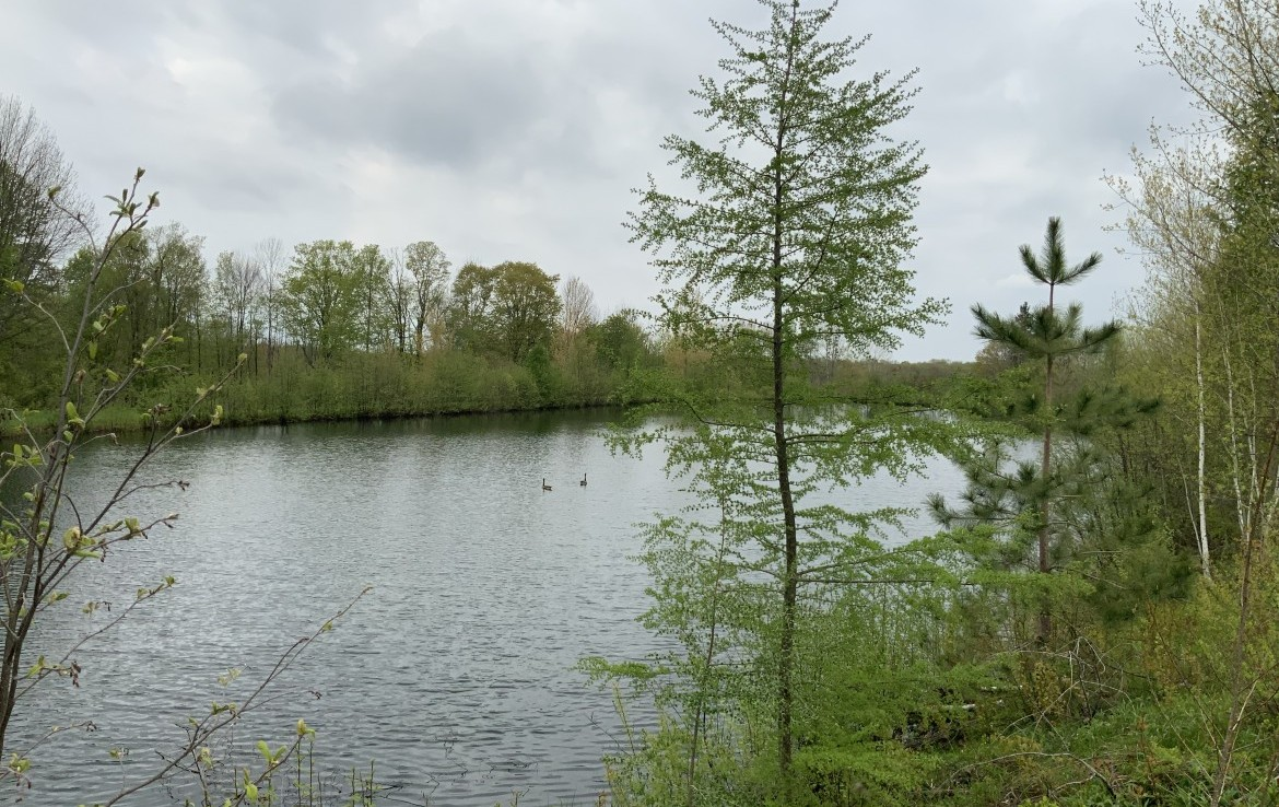 90 acres Fishing and Hunting Land for Sale with Country Home in Williamstown, NY!