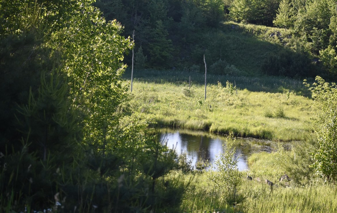 1055 acres Hunting Land for sale Bordering State Forest in Edwards, NY!