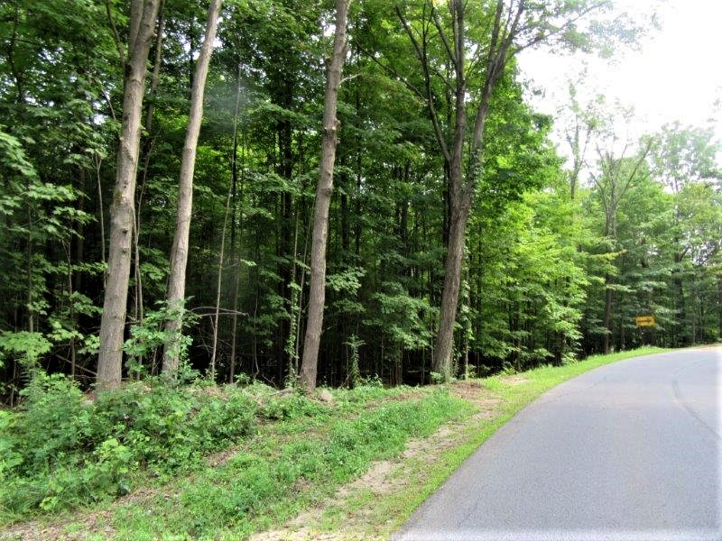 Hunting Land near Lincoln Mountain State Forest in Saratoga County!