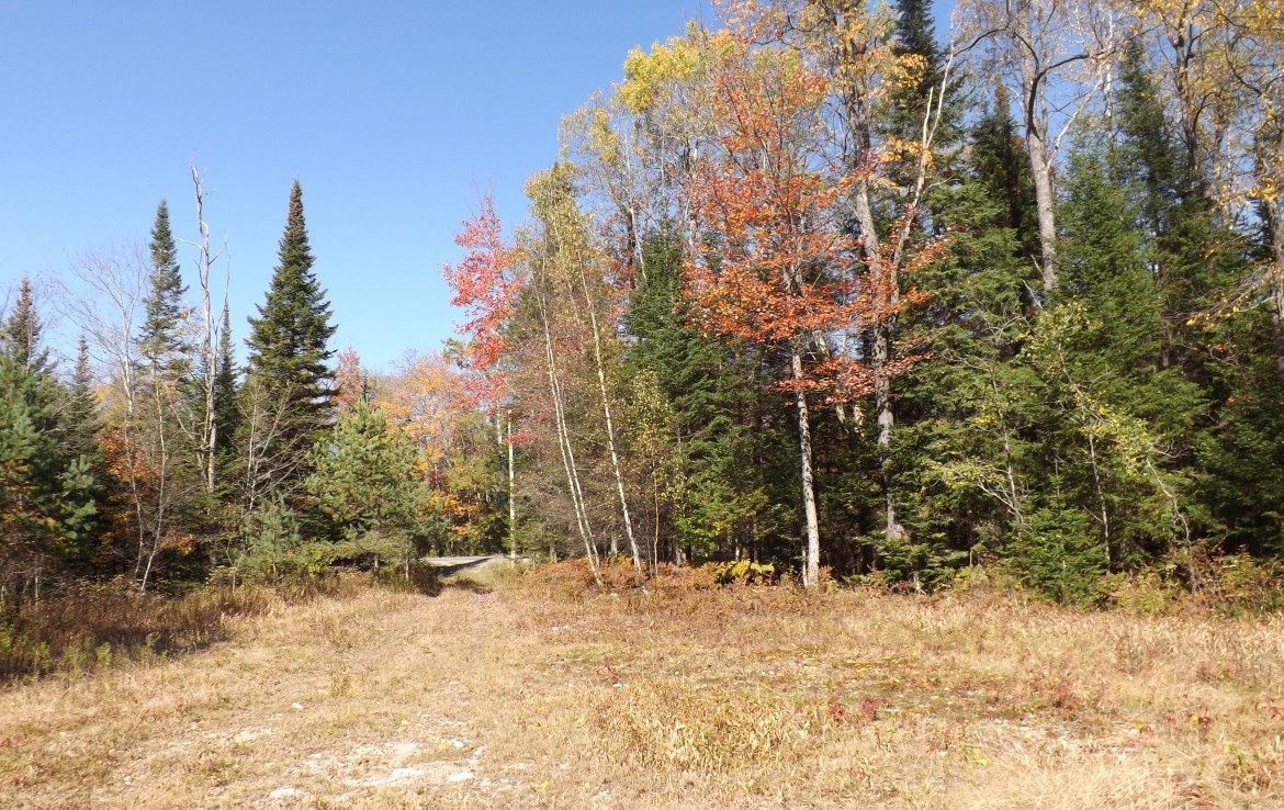 elevated building site on 108 acres land for sale NY