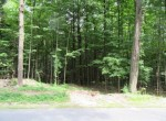 Road Access Hunting Land for Sale