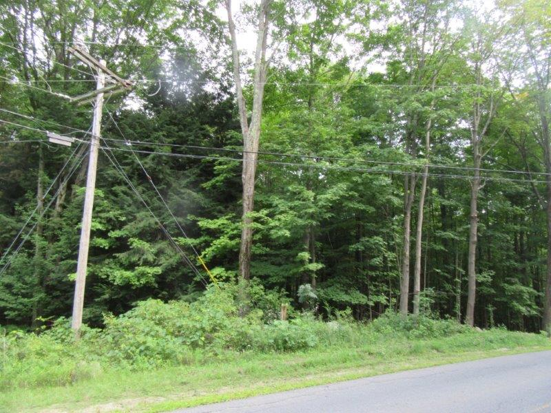 54 acres Timberland near Lincoln Mountain State Forest | NY Outdoor