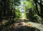 2 acres Borders Tassel Hill State Forest for sale
