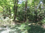 land for sale that borders 2,440 acres of State Forest