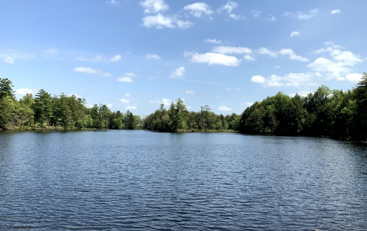 17 acres on Carterville Pond Amboy NY
