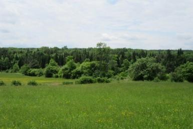 34 acres Farmland with Views Boonville NY