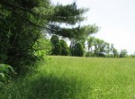 51 acres land for sale on Little River NY