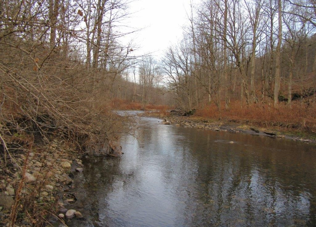 11 acres on Lansing Kill Trout Stream Boonville NY