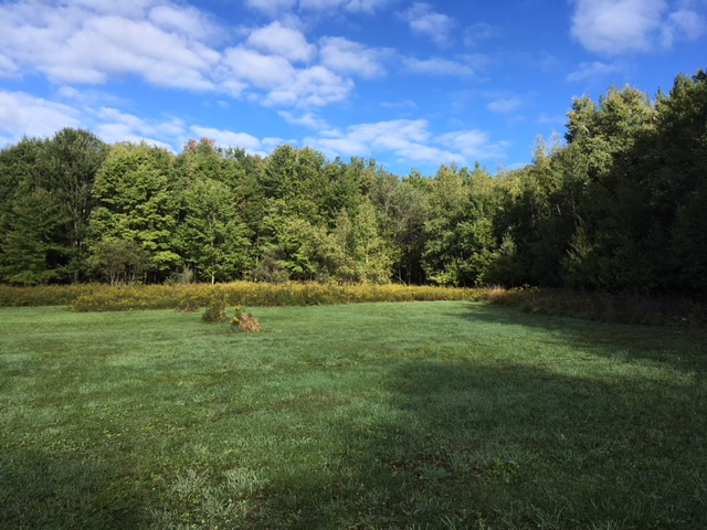 Building Lot and Fields for sale Camden NY