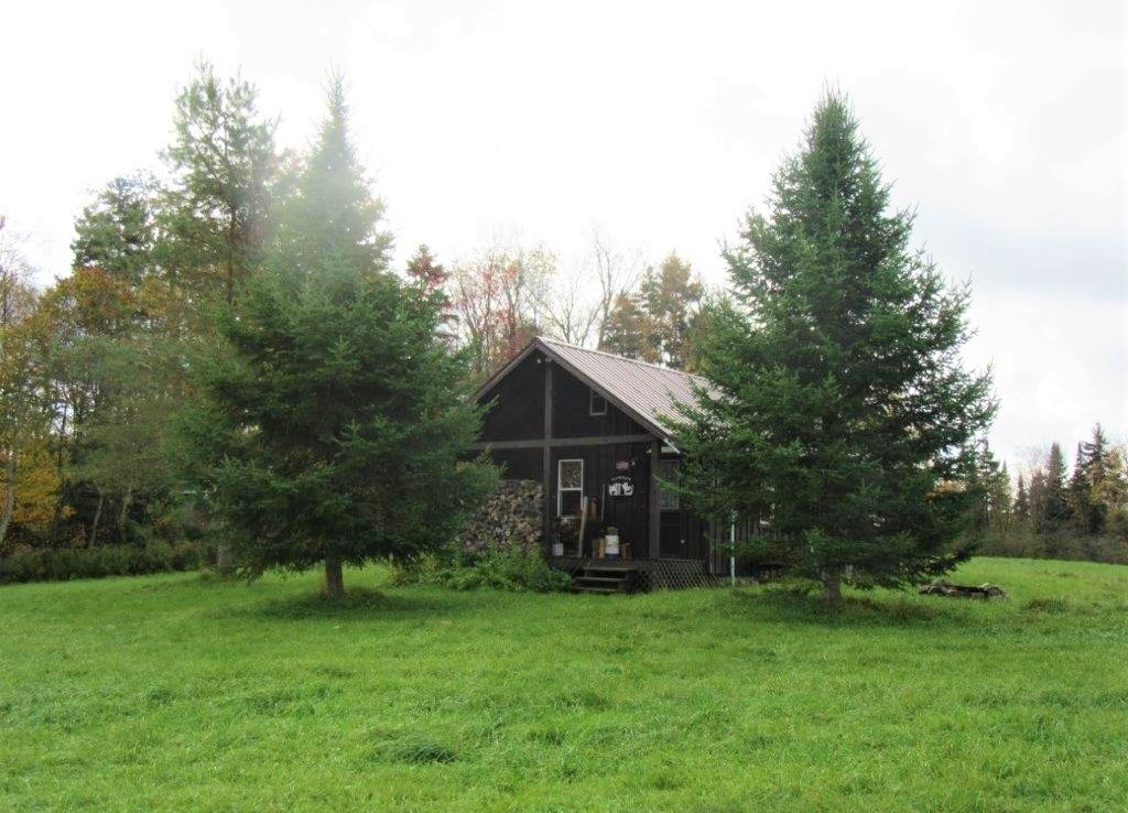 Land & Cabin for sale Tug Hill NY