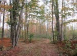 Affordable acreage for hunting for sale ny