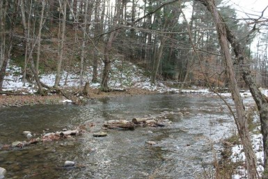 waterfront land for sale with Salmon and Steelhead fishing!
