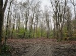 Hunting Land for sale Pharsalia NY