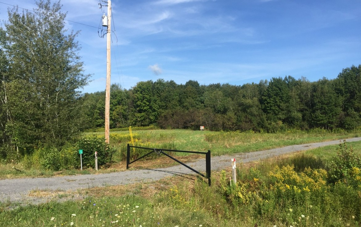 42 acres of land with driveway and gate