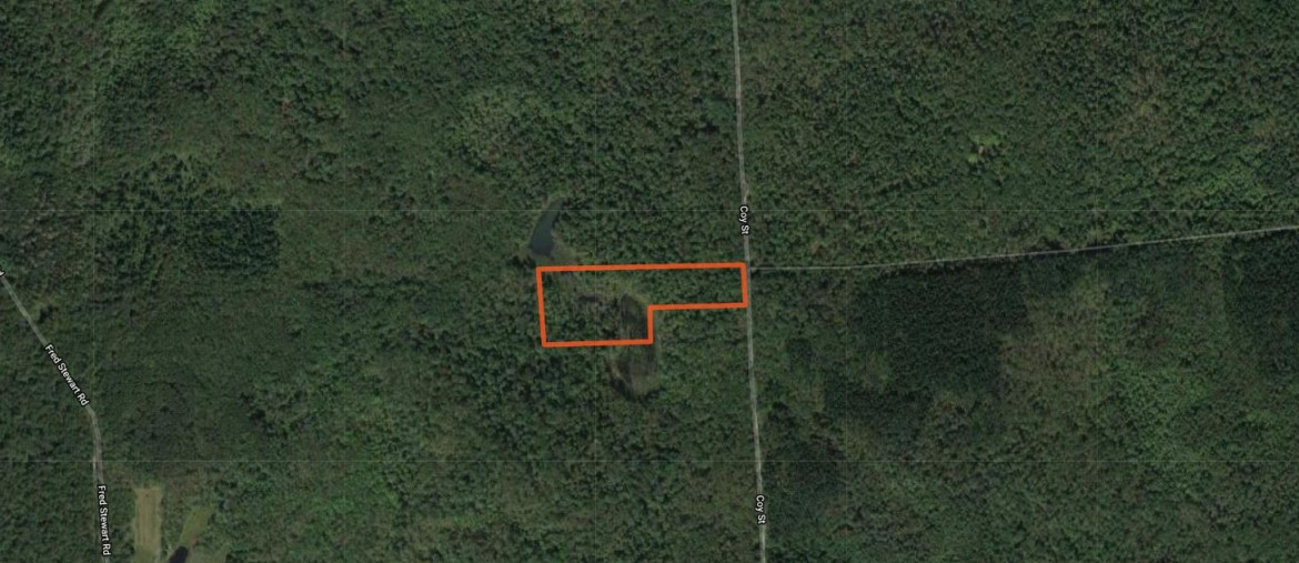 Map Hunting Land for sale NY