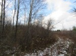 Hunting Land for sale upstate NY