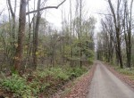 Road Hunting Land for sale Pharsalia NY