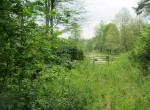 Hunting land for sale Hermon New York