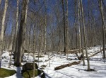 312 acres Hunting Cabin with Pond Hermon NY