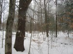 north country woodlands for sale upstate ny