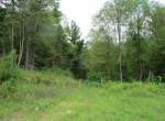 312 acres hunting land for sale with a cozy cabin, spring-fed pond, and timberland.