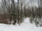 hunting land for sale camden ny