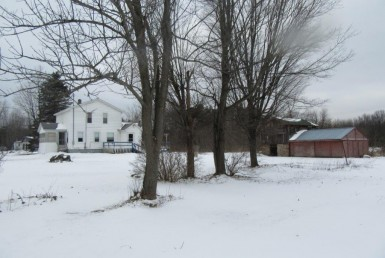 Country Home and Hobby Farm for sale NY