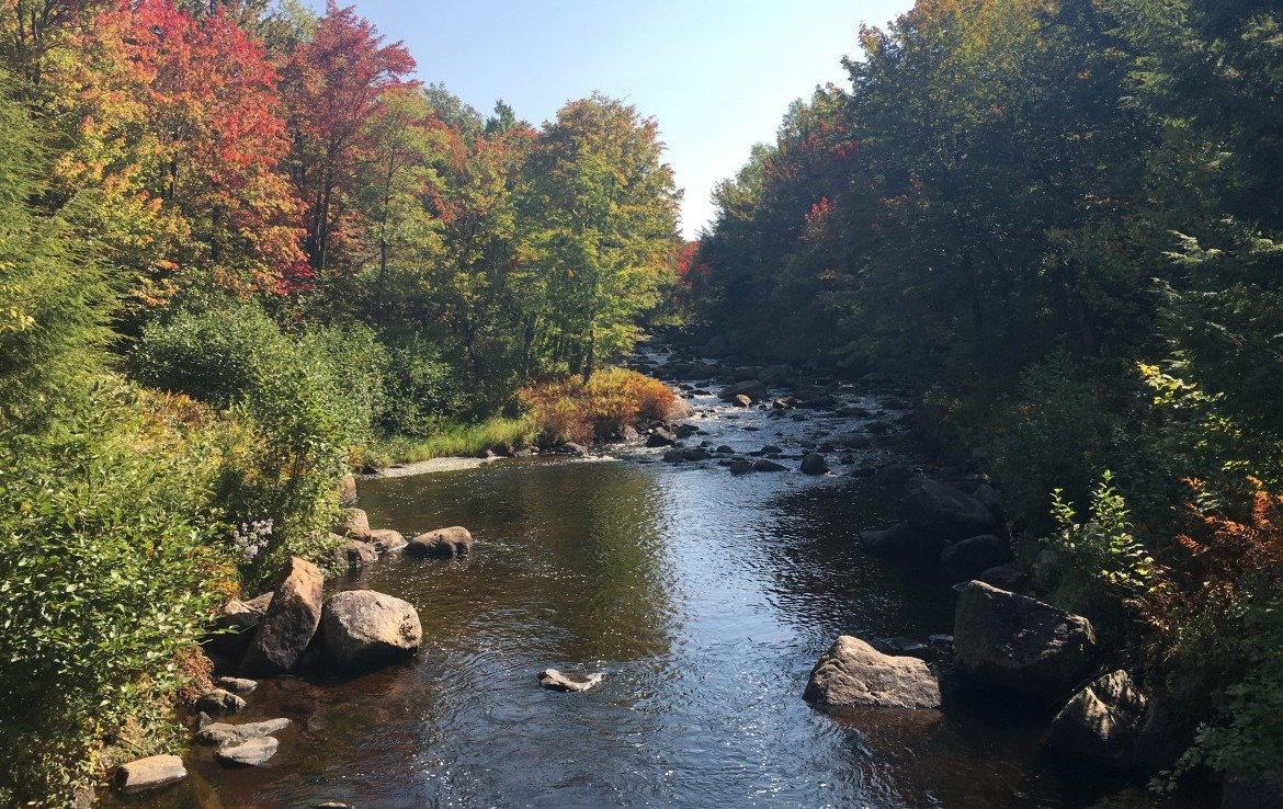 385 acres River Frontage with House in Adirondacks