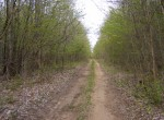 7 acres Bordering State Land Stockholm NY