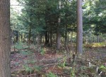 5 acres land for sale st. lawrence county