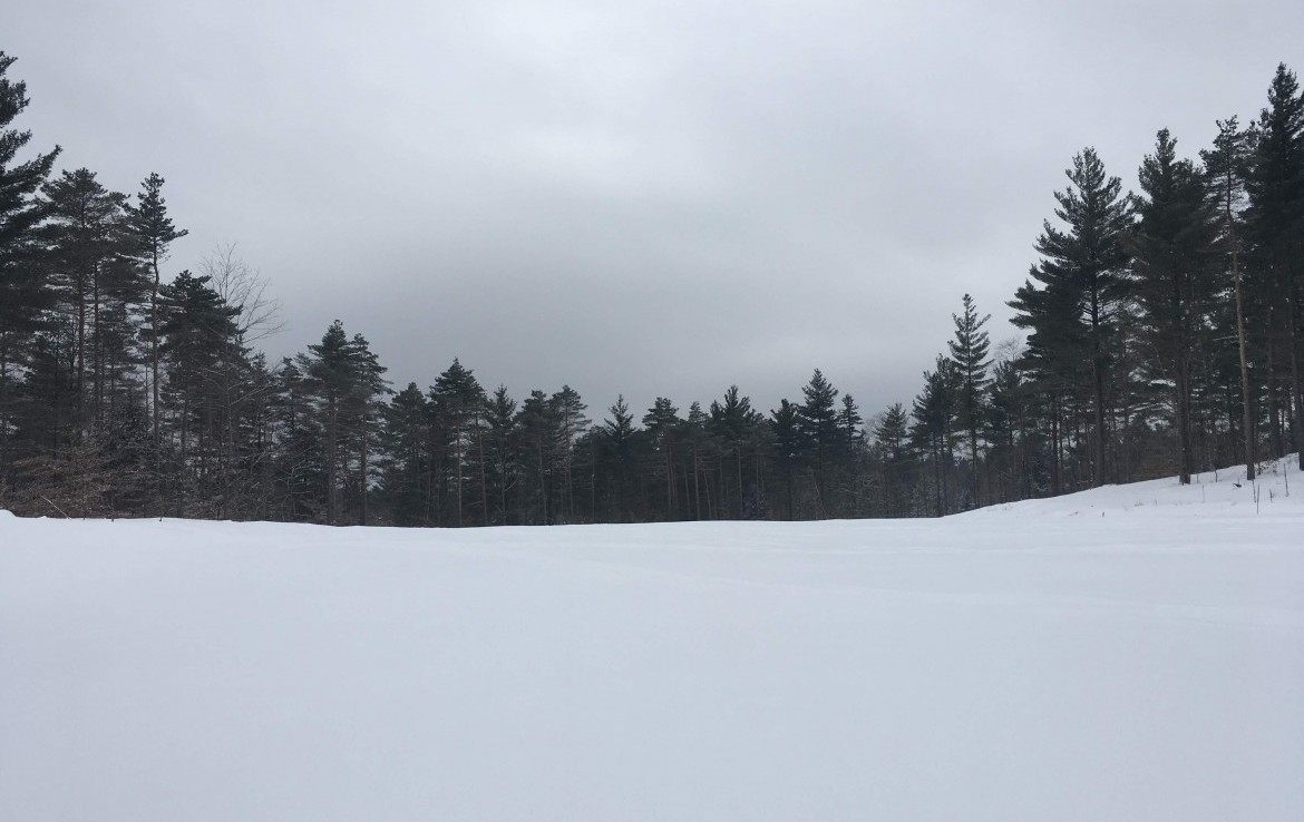 114 acres land for sale in St. Lawrence County!