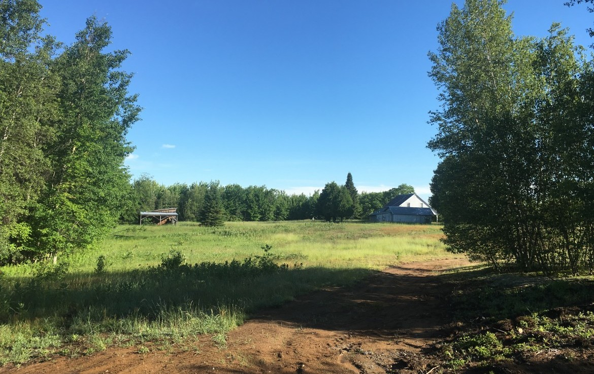 385 acres waterfront land for sale with country home in Waverly, NY!