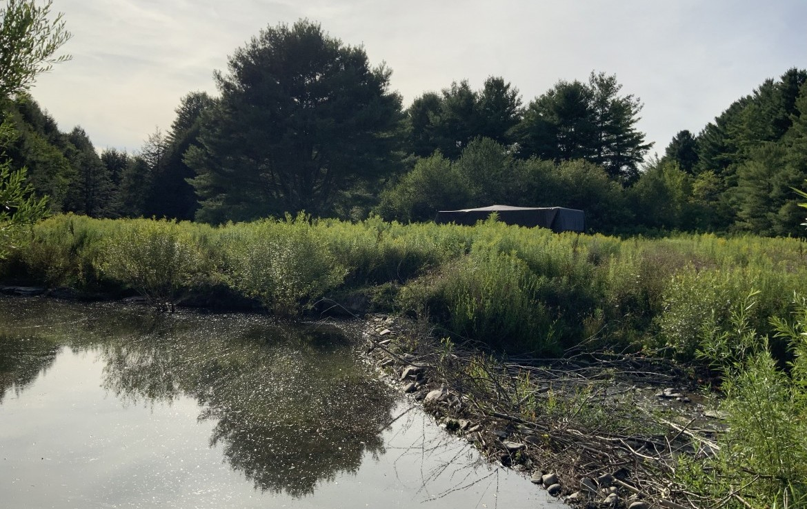 85 acres Hunting Land and Camper for sale in Plymouth, NY!