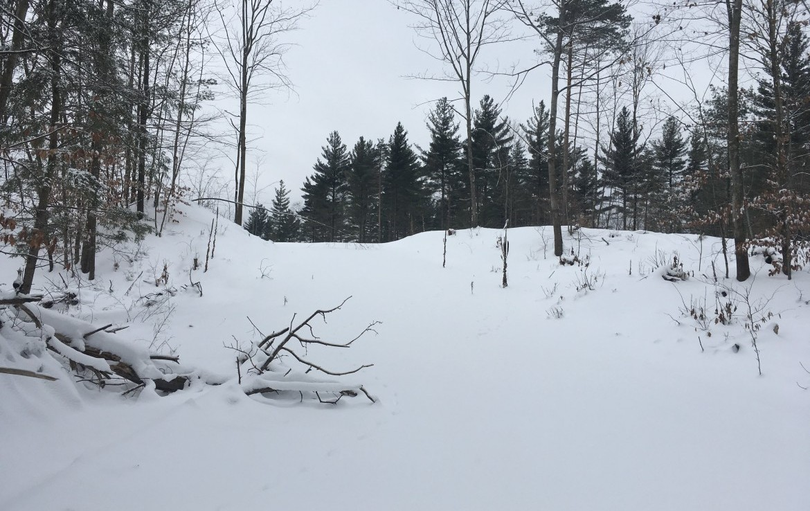 114 acres just across the road from the Raquette River.