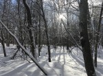 20.4 secluded acres along a private, plowed country road