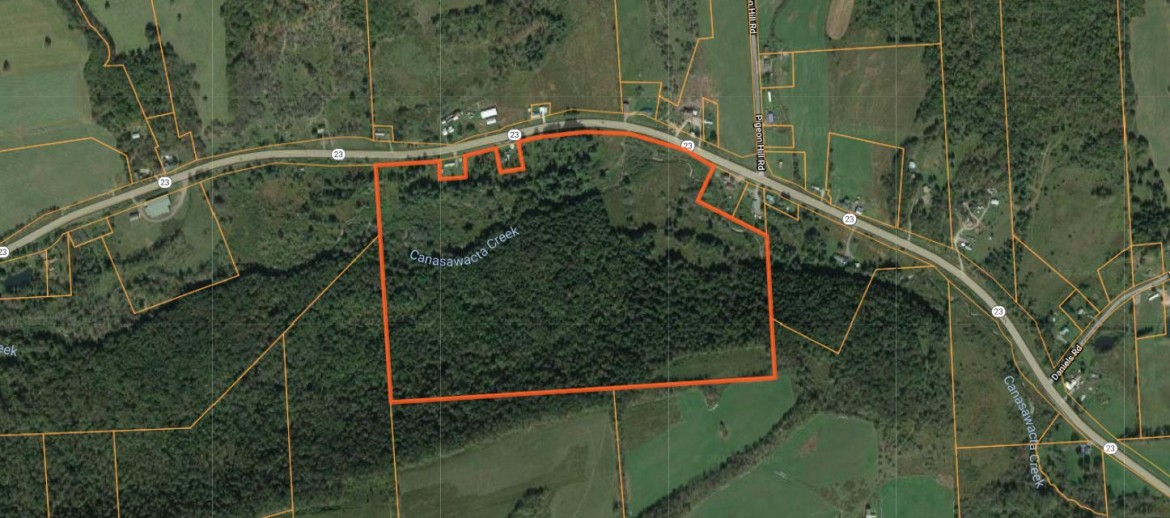 Map of 85 acres for sale NY