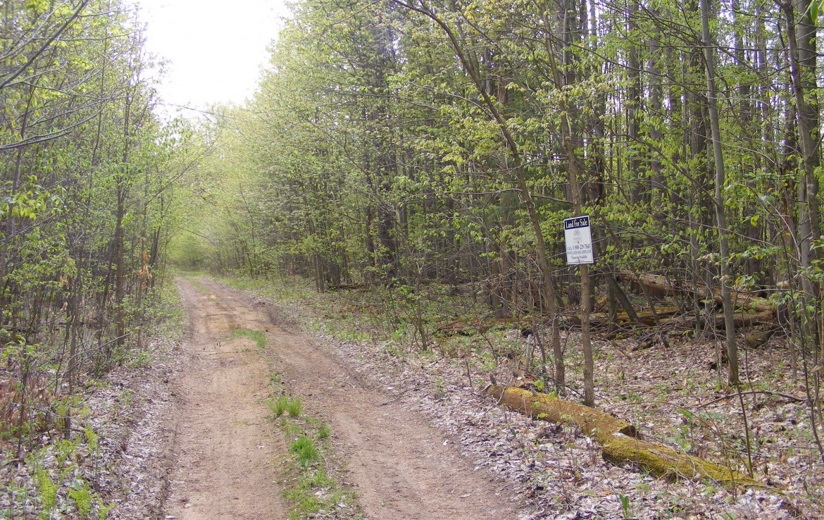 lot borders the 1092 acre Buckton State Forest