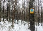 34 acres with ATV Trail Access in Tug Hill