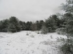 8 acres hunting land for sale Amboy NY