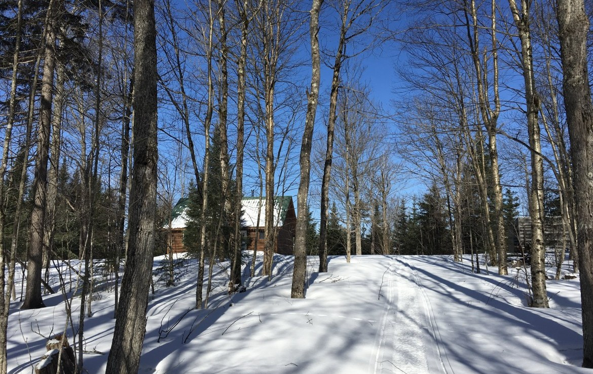 274 acres land for sale with a Turnkey Cabin and Private 15 acre Adirondack Bass Pond!