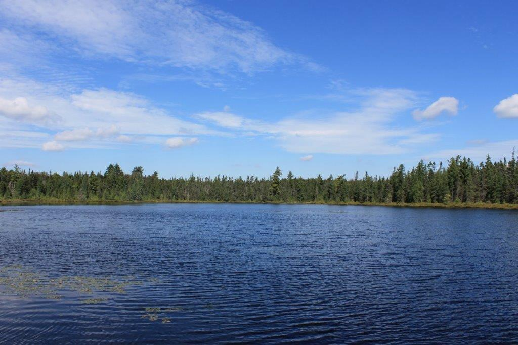 274 acres land for sale with a Turnkey Cabin and Adirondack Bass Pond!