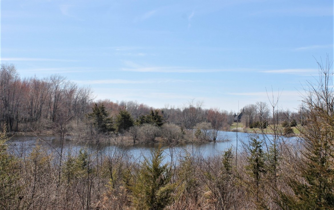 13 acre Waterfront Land Livingston NY