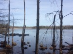 145 acres with Private Pond near Oneida Lake