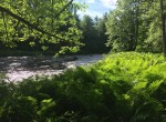 5 acre Riverfront land for sale in Brasher, NY!