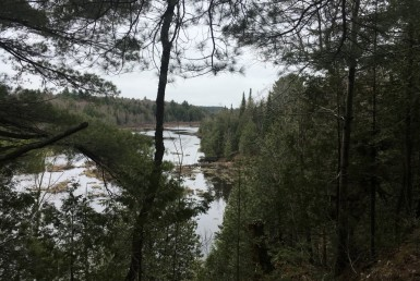 108 acres Waterfront bordering State Land