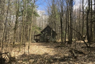 70 acres Hunting Land and Camp Hopkinton NY