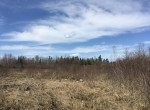 50 acres Hunting Land near Brasher State Forest
